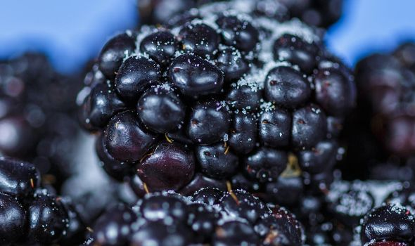 Blackberry Detail by ian-roberts