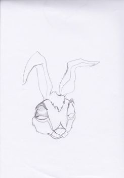 Rabbit Doodle by the-animatoress