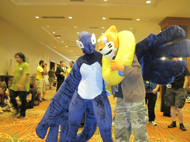 Shadow Lugia and Buizel