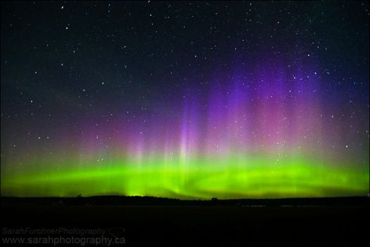 Lights in The Sky by Sarah--Lynne