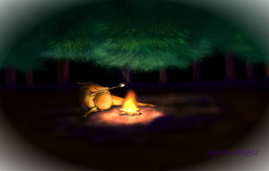 Derp Friday: Campfire by nightwindwolf95