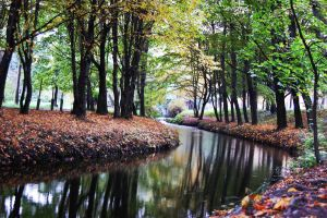 Winding River 12572065 by StockProject1