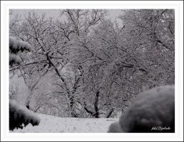 Winter....11 by gintautegitte69