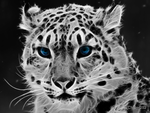 Ice Leopard by Chillstice