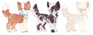 puppy adopt batch AUCTION (closed) by woIvves