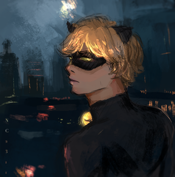 Chat noir - miraculous ladybug by nc2311
