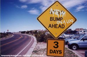 New Bumps Ahead - t-3 ad by BumpOnALog
