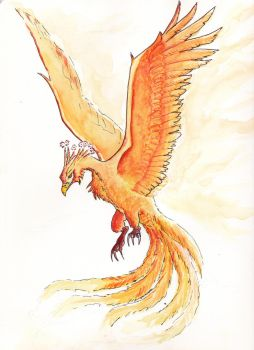 Phenix by Onyris