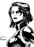Domino sketch by ReillyBrown