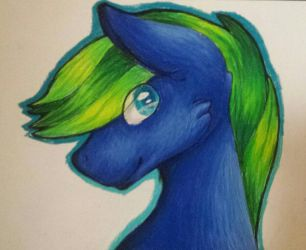 [C] by dolphinMLP