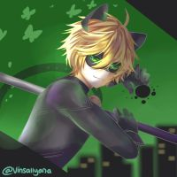 Chat noir by vinsallyana