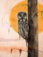 Owl in Tree by themasterofnone