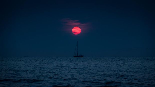 Under the Red Sun by gilderic