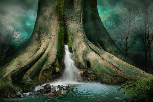 The magic faraway tree by Desertroseimages