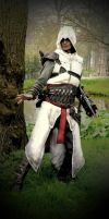 AC - Altair, master of the assassins by RBF-productions-NL