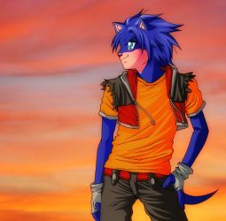 Sonic sunset by RosaKiddy