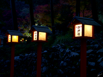 Shrine Lanterns at Night by scarletdelusion