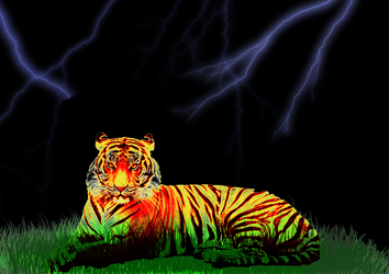 Tiger Painting by nitinrajput90