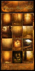 Autumn Magic Wood Backgrounds by moonchild-ljilja