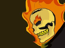 Ghost Rider by toywizdood01