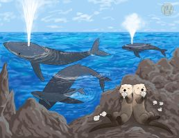 Pod of Whales and also Some Otters by Kairu-Hakubi