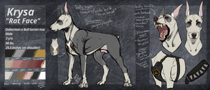 Rat Face Reference by HellBoundDagz