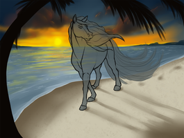 Sunset Walks | YHH | *Closed* by Winzer