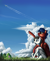 Look at this plane, that i just found by Pony-Way