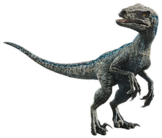 Fallen Kingdom: Blue the Velociraptor V5 by sonichedgehog2