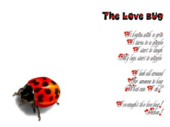..::LoveBug::.. by mickeykumar