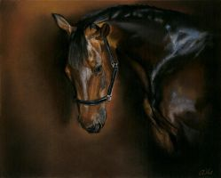 Drawing - Portrait of horse by Ennete