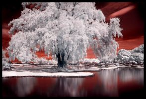 Another world -IR- by 32tsunami