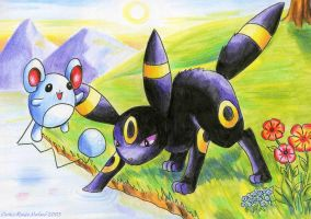 Marill and Umbreon