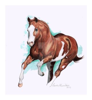 Paint Horse by HorsEquinoS