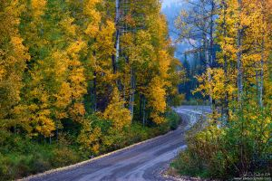 The Road Of Beauty by kkart