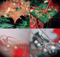 Christmas gift by roughhand