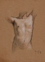 Torso study by SILENTJUSTICE