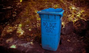DO NOT MOVE BIN by thespook