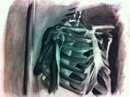 Skeleton's Ribcage by Saber-Cow