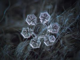 Icy jewel by ChaoticMind75
