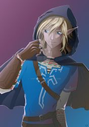 Link - The Legen of Zelda : Breath of the Wild by VinybOo