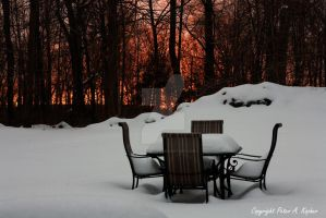Sunrise Over Our Snow-Covered Yard by peterkopher