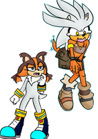 Matt and Nat Sonic Swap: Sticks and Silver by MattMiles