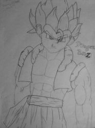 Gogeta by SlayersStronghold