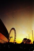 The London Eye at Sunset by danzka