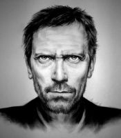 Hugh Laurie Final by lucidity69