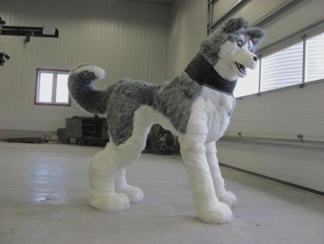 Gin quadsuit cosplay *SOLD* by ElementalFurs