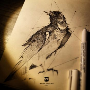 20170211 Raven Sketch Psdelux by psdeluxe
