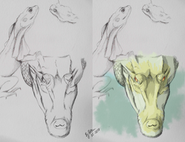 Crocodile - colored and drawing by Ananiel