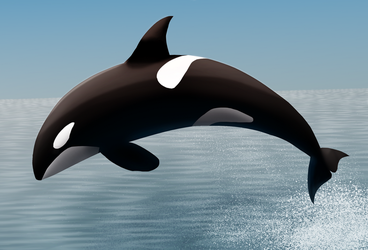 Orca jumping (Daily 17) by Aurora-Alley